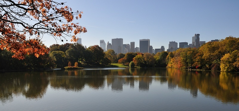 © Liore Zeitoun - Central Park - New York