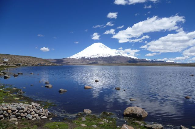 Le volcan Nevado Sajama - Bolivie