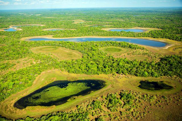 Voyage Treks cariocas et Pantanal sauvage