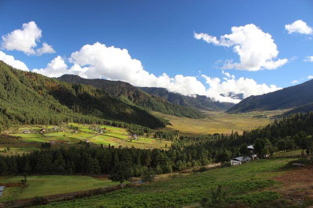 La vallée de Gangtey - Bhoutan