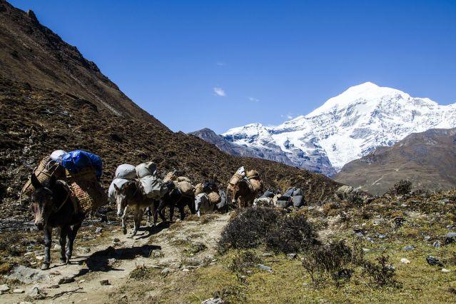 Chaîne du Jomolhari - Bhoutan