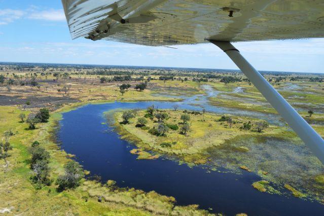 Delta de l Okavango - Botswana