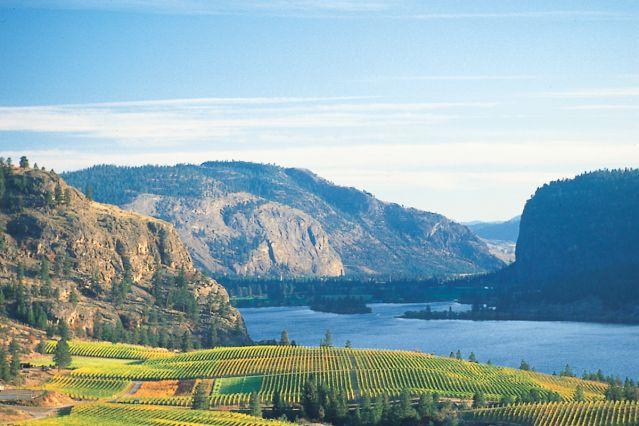 Voyage Vallée de l'Okanagan : Vignobles et Terroir