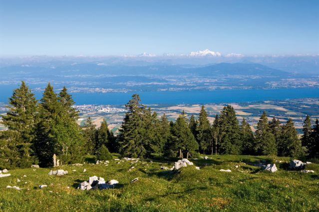 Le Lac Léman - Suisse