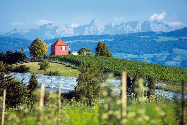 Voyage Le tour du lac de Constance