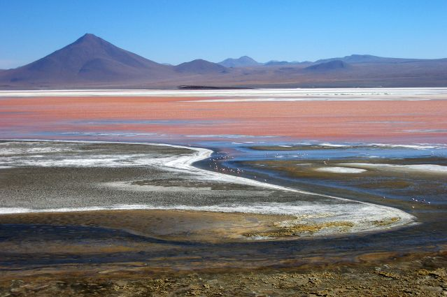 © Denis Chambon - La Laguna Colorada - Bolivie