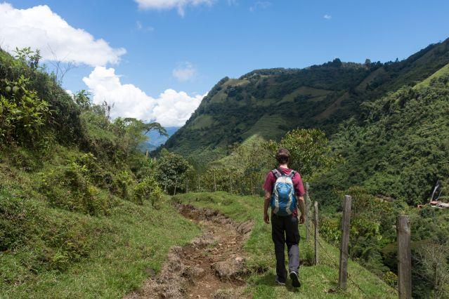 Voyage Trek et rencontre sous la canopée de Medellin