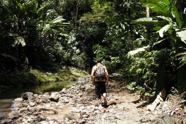 Parc national de Corcovado - Costa Rica
