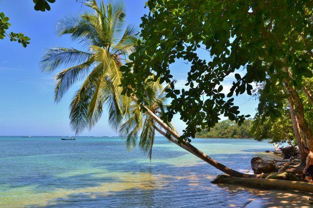 Voyage Pura Vida au Costa Rica !