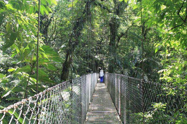 Voyage L'écotourisme à votre rythme
