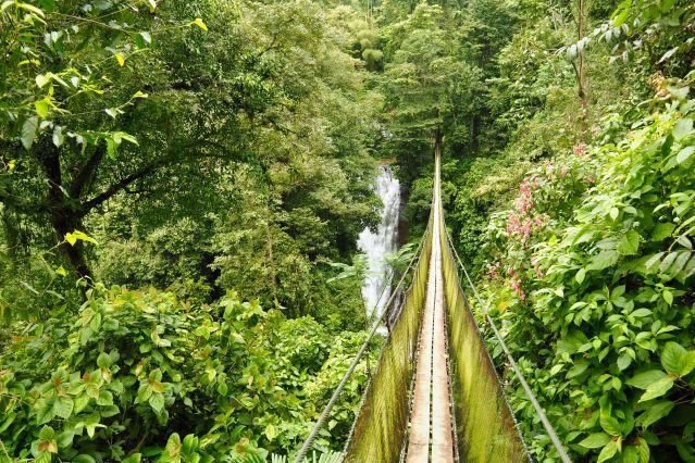 Voyage Balade costaricaine, entre faune et flore