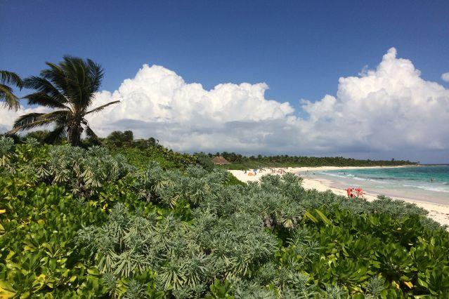 Plage d IIxcacel, proche de Tulum - Yucatan - Mexique
