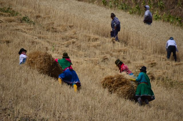 Travail des femmes - Equateur