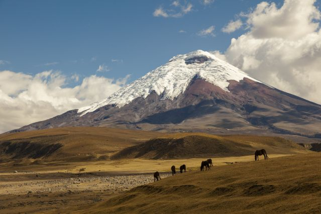 Voyage Ascension du Cotopaxi (5897m)