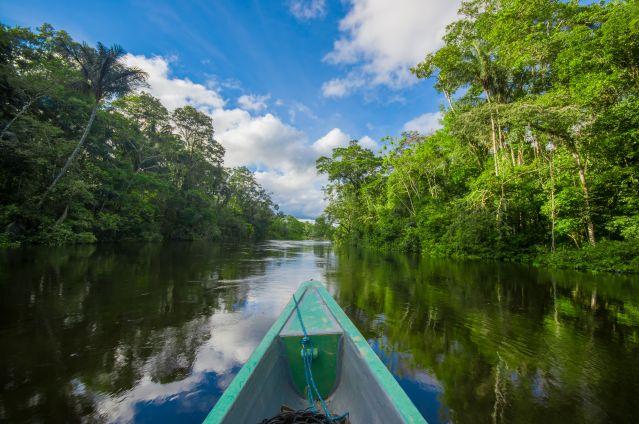Réserve de Cuyabeno - Equateur