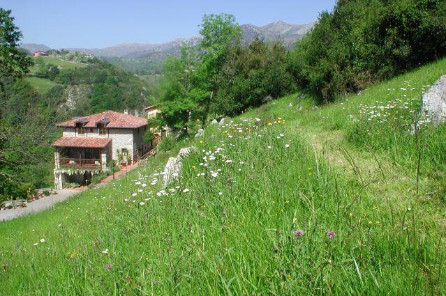 Posada Del Valle - Arriondas - Espagne