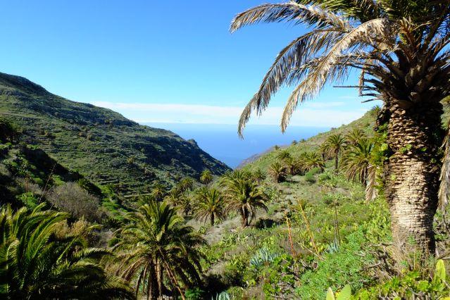 Barranco Valle Gran Rey - La Gomera - Canaries - Espagne