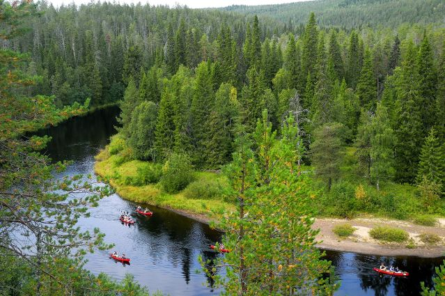 Parc Régional de Hossa - Laponie - Finlande