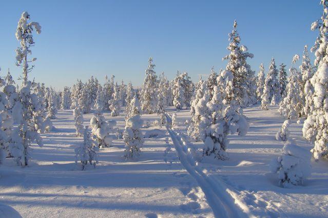 Voyage Raid en ski de fond en Laponie