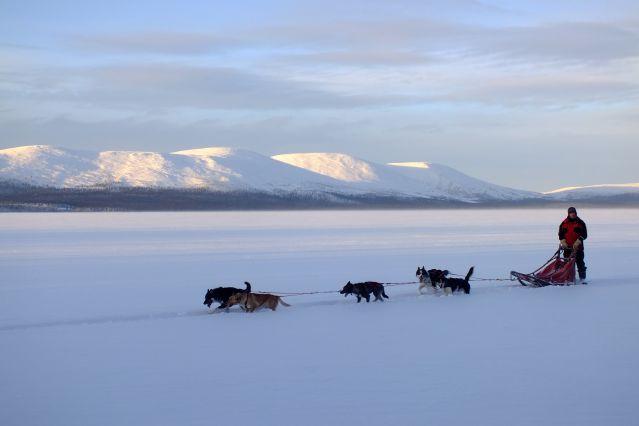 Conduite d attelage sur un lac immense - Finlande
