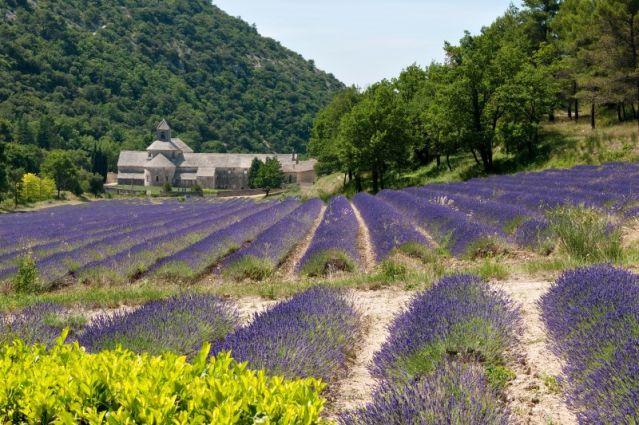 Luberon - France