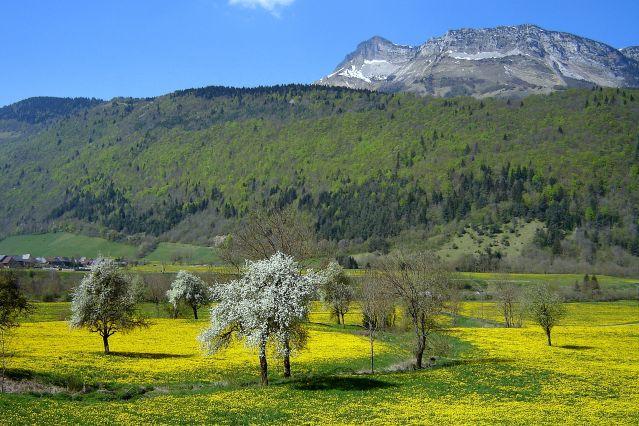 Les Bauges - France
