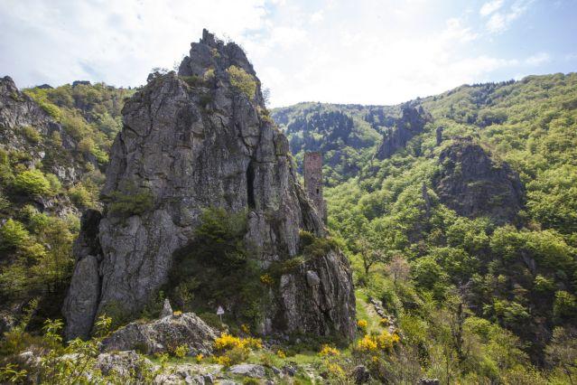 Paysage du piémont ardéchois - France
