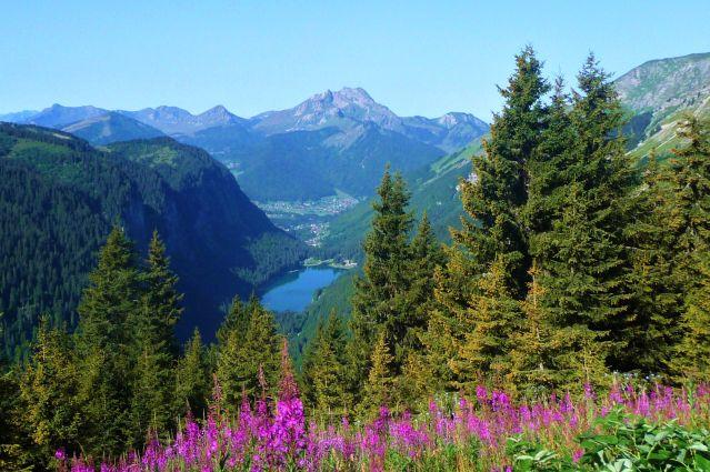 Le lac de Montriond et le Roc d Enfer depuis le col de Bassachaux - Grande Traversée des Alpes - France