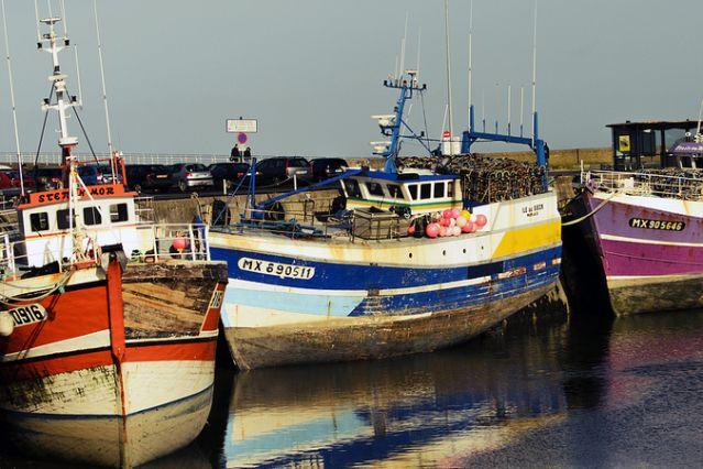Roscoff - Finistère - Bretagne - France
