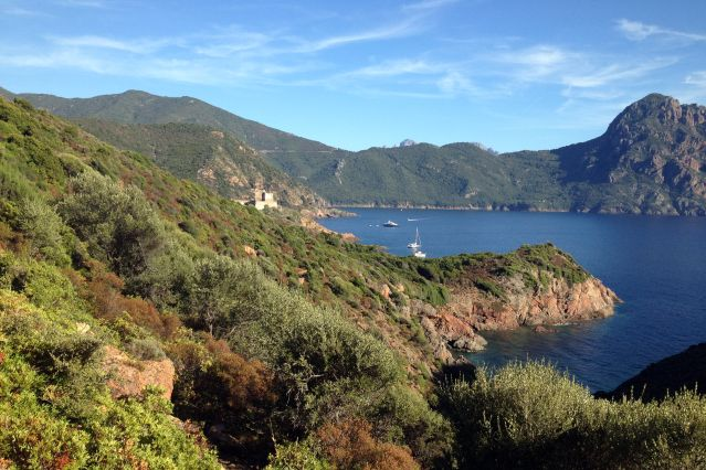 Golfe de Girolata - Mare e Monti - Corse - France