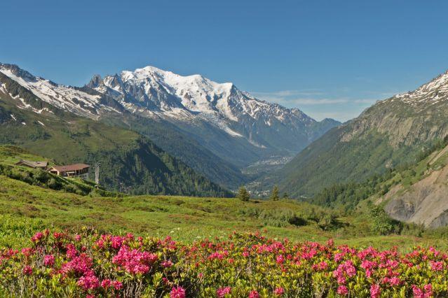 Tour du mont Blanc - Alpes du Nord - France