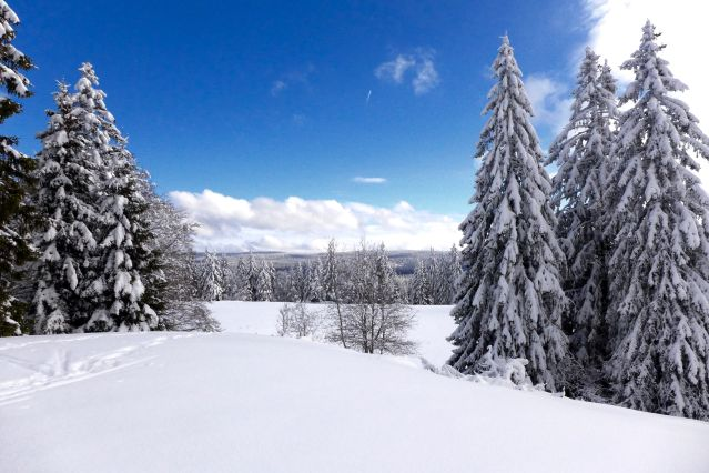Neige dans le Jura - France