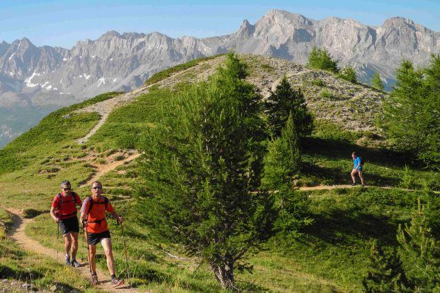 Traileurs - Alpes du Sud - France