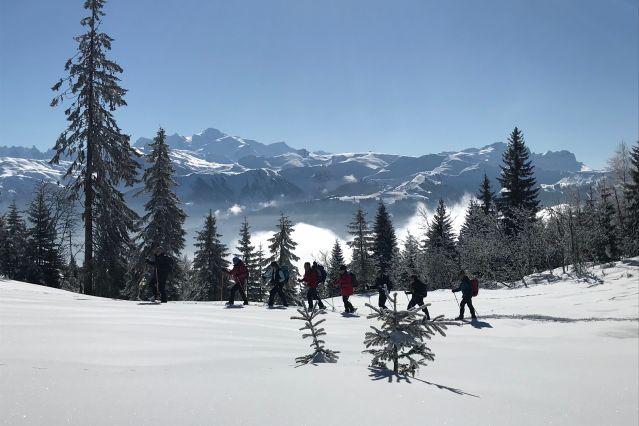 Voyage Plaisirs neige à Sixt-Fer-à-Cheval