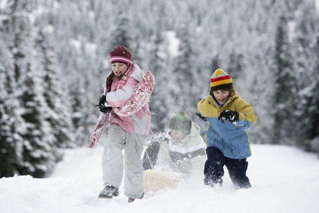 Voyage Aventures hivernales sur le plateau de l'Aubrac