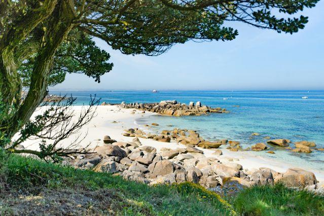 La côte de Granit Rose en liberté