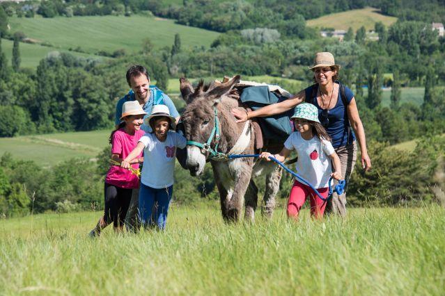 Balade avec un âne - Ardèche - Balcons du Rhône - France