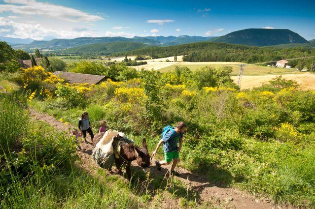 Voyage Balades avec un âne au pied du Vercors