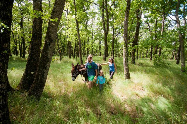 Voyage Les Pyrénées Cathares avec un âne