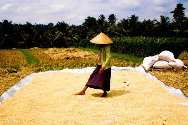 Voyage De Bali aux îles Gili