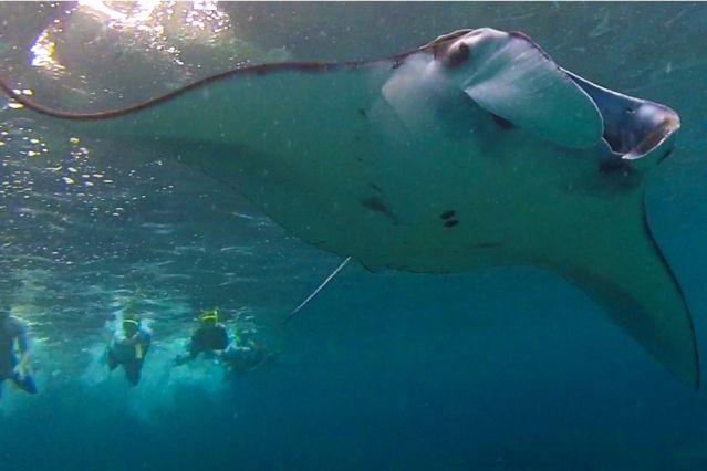 Voyage Extension sur l'île de Nusa Penida