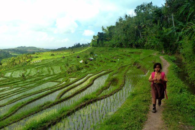 INOF01 - Bali - Indonésie
