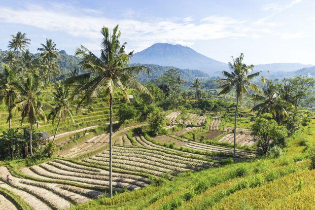 Voyage Bali, rizières, mer et volcans