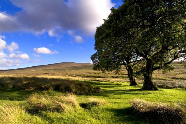 Montagnes de Wicklow - Irlande