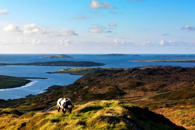 Voyage De Dublin aux îles du Connemara