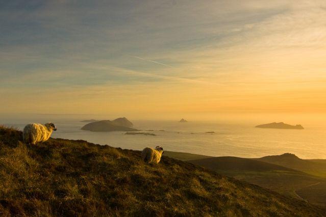 Voyage Kerry : le royaume irlandais