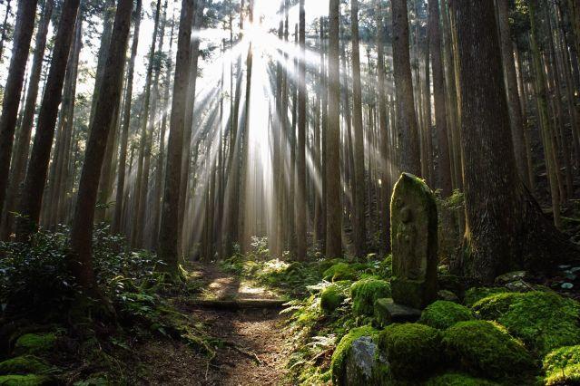 Randonnée au cœur du Japon ancestral