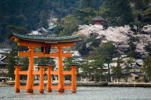 Voyage Grande découverte du Japon