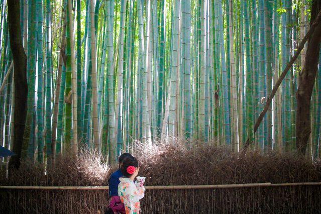 Voyage Découverte du Japon, de Tokyo à Kyoto