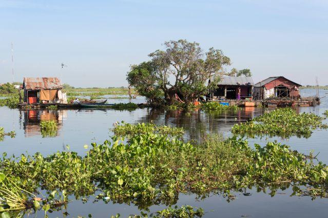 Maisons flottantes - Rivière Sangker - Cambodge